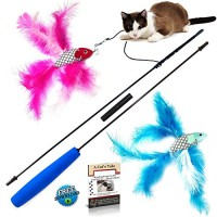 2-Fish-and-Feather-Teaser-and-Exerciser-For-Cat-and-Kitten-Cat-Toy-Interactive-Cat-Wand-0-0