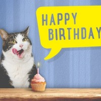 Amazon-Gift-Card-Email-Birthday-Cat-0-0