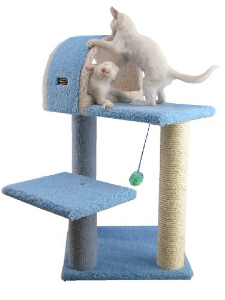 Armarkat Cat Tree Model B2903 Sky Blue Purrfect Cat Breeds