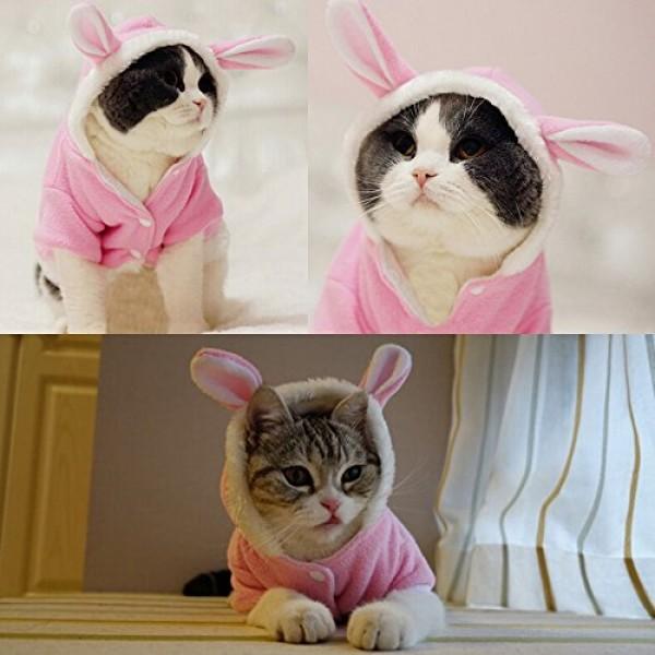 Bro Bear Plush Rabbit Outfit With Hood Amp Bunny Ears For