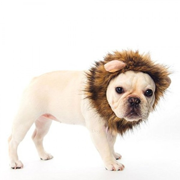 Dogloveit-Pet-Costume-Lion-Mane-Wig-for-Dog-Cat-Halloween-Dress-up-with-EarsPlease-be-aware-of-fake-products-from-other-sellers-0-3