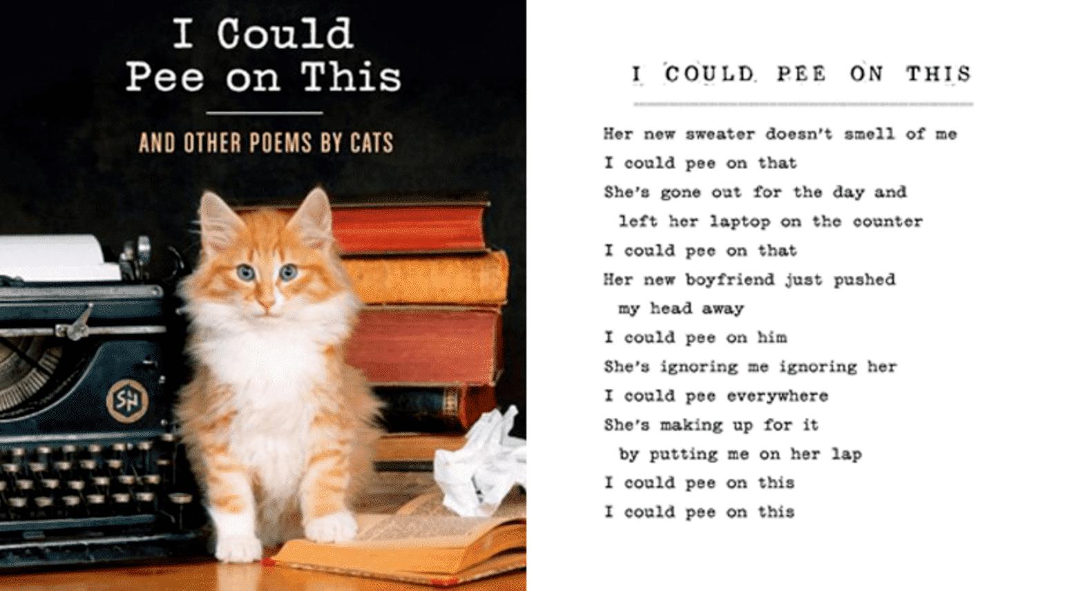 funny cat books
