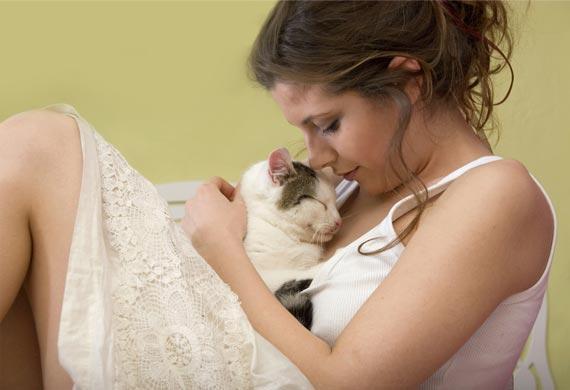 cat-purr-healing-benefits