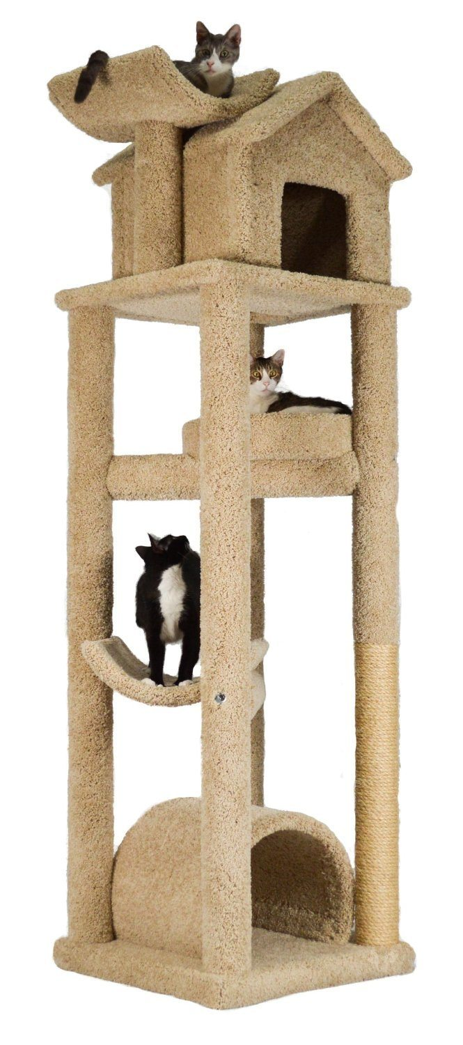 cat-trees-for-big-cats