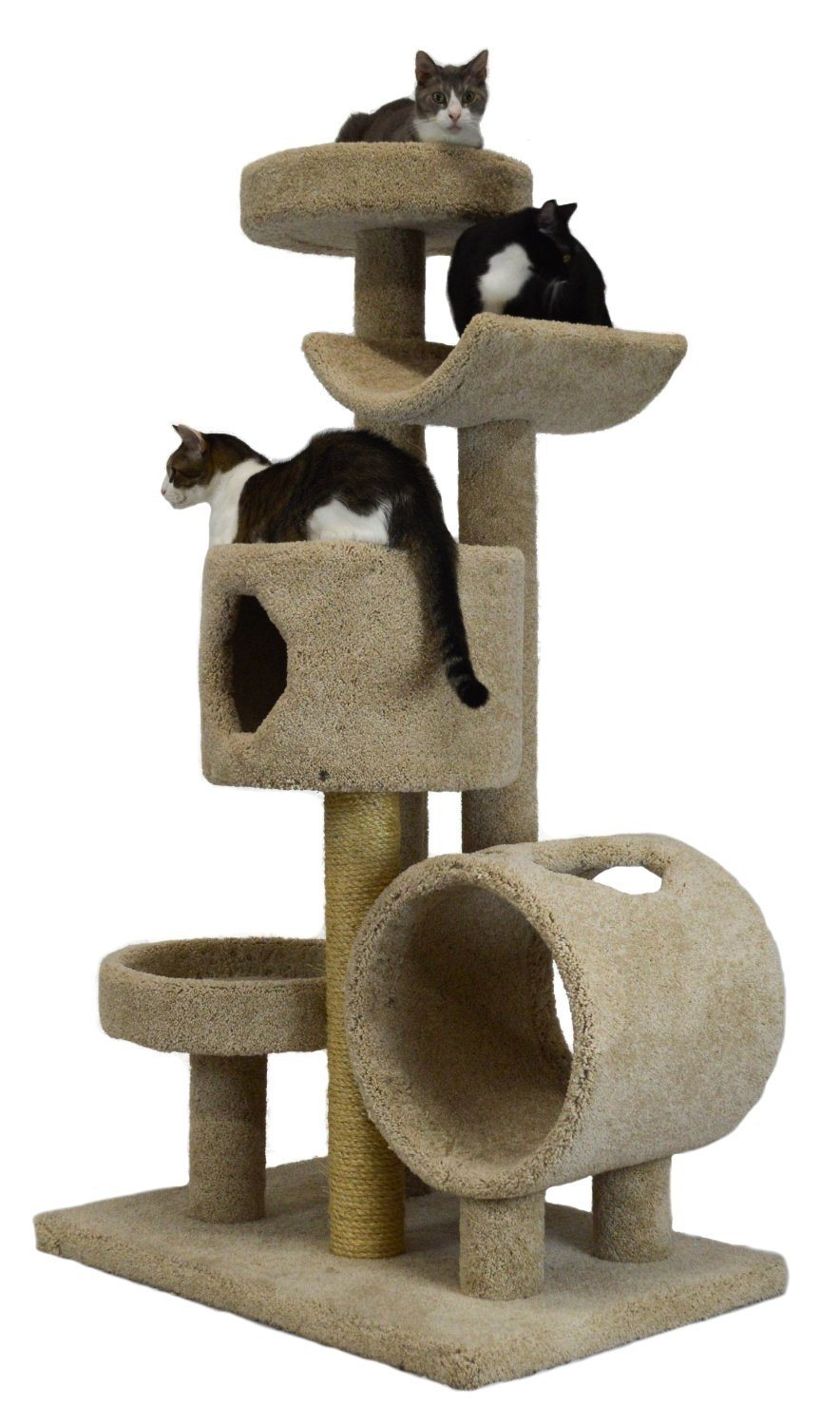 cat-trees-for-large-cats