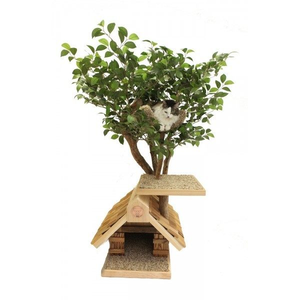 cat trees that look like trees