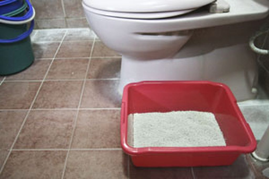 Cat toilet litter box trainer