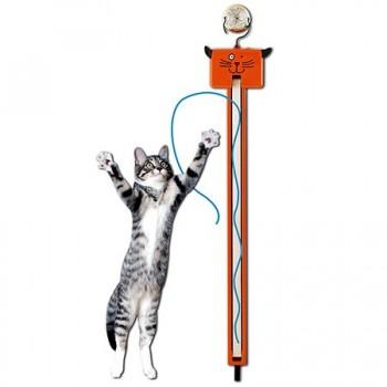 Moody-Pet-Fling-Ama-String-0