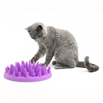 Northmate-Catch-Interactive-Feeder-for-Cats-0