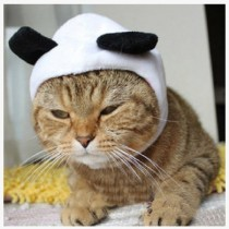 UDTEE New/Cute Fashion Colorful Panda Shape Design Pet Dog/Cat Hat Classics Collection Pet Costume for Christmas Festival(Size:Small)