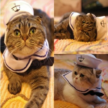 Vedem-Small-Dog-Cat-Puppy-Adjustable-Outfit-Costume-Hat-Cape-2pcs-Sailor-0