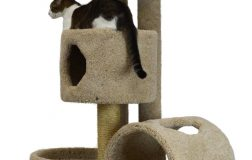 Top 5 Purrfect Cat Trees for Large Cats