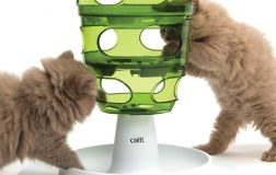 8 Fun Cat Food Puzzle Feeders to Keep Your Cat Slim and Entertained