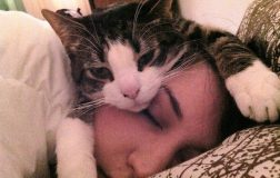 12 Surprising Signs Your Cat Loves You